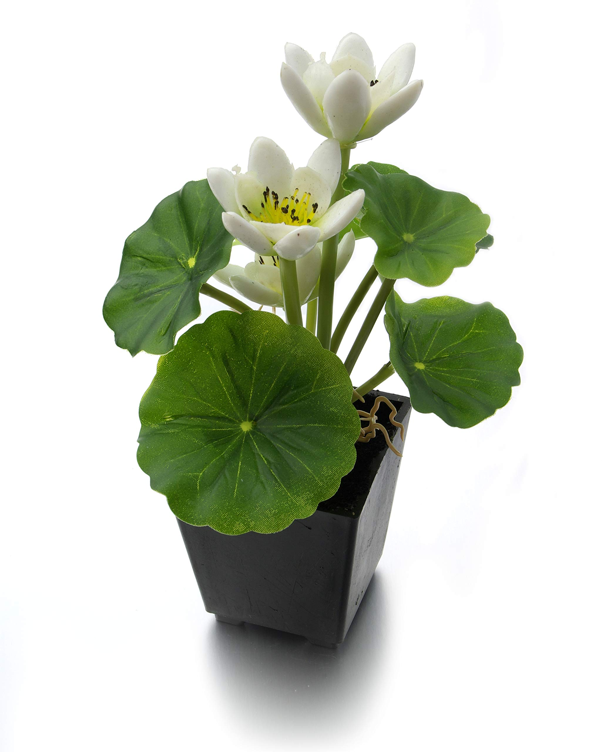 MaxFlowery-Set-of-2-Artificial-Real-Touch-Lotus-Plant-with-White-Blooms-in-Matt-Black-Pot-Duo-Fake-Plants-Greenery-Flowers-with-Square-Planter