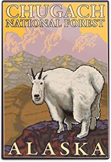 product image for Lantern Press Mountain Goat, Chugach National Forest, Alaska (12x18 Aluminum Wall Sign, Wall Decor Ready to Hang)
