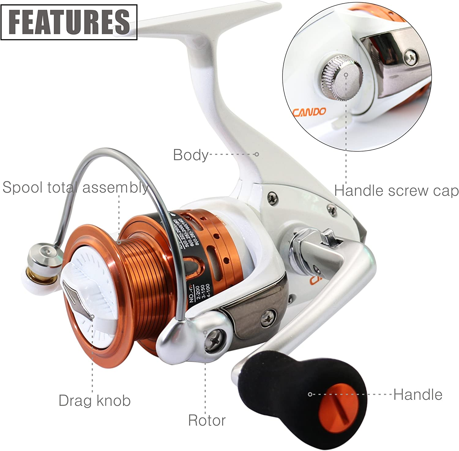 TICAs Sub-Brand CANDO Spinning Reel 4.5:1,8RRB+1RB-Left//Right Interchangeable Lightweight Fishing Reel Wheel,Aluminum Alloy Reel