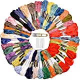 Embroidery Thread 108 Skeins 36 Colors, Rainbow Color Embroidery Floss, 6 Strands String for Friendship Bracelets , Cross Stitch Hand Crafts, String Art with Scissors and Sewing Needles by Queenti