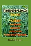 Como Cultivar Marihuana La vía Más rápida y sencilla Al éxito