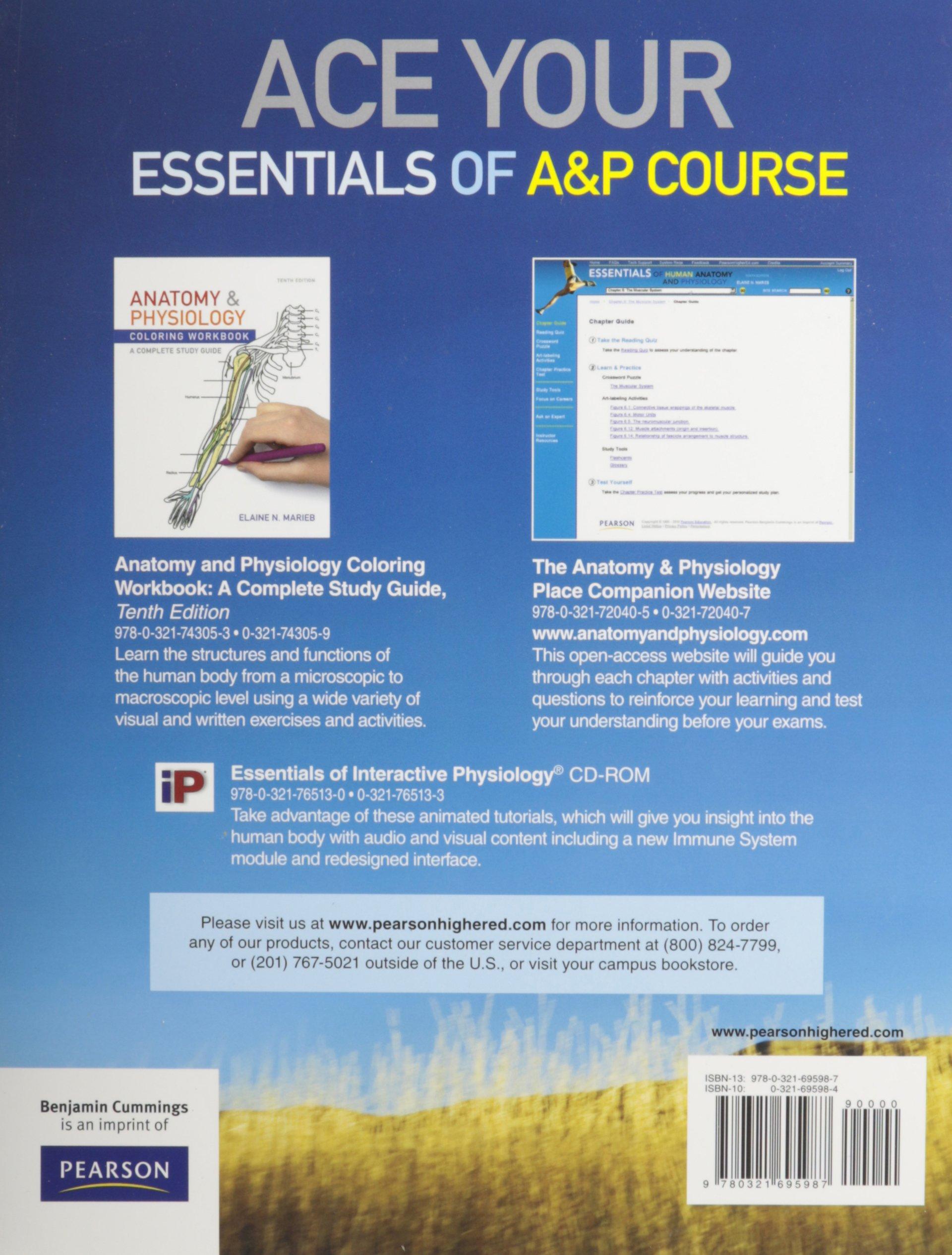 Essentials of Human Anatomy & Physiology Laboratory Manual ...