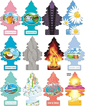 Little Trees Home And Car Air Fresheners 12 Pack Vacation Pack Ultra Rare Scents Air Fresheners Amazon Canada