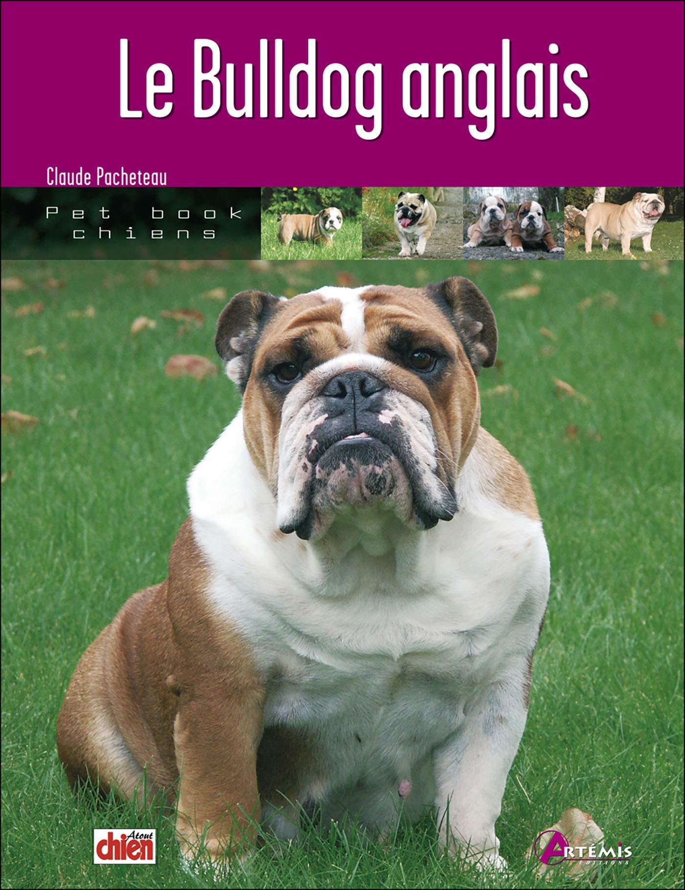 Bulldog Anglais Le Amazonca Claude Pacheteau Books