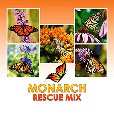 Monarch Butterfly Rescue Wildflower Seeds Bulk + 8 Bonus Gardening eBooks + Open-Pollinated Wildflower Seed Packet, Non-GMO, No Fillers, Annual, Perennial Milkweed Seeds for Monarch Butterfly : Garden & Outdoor