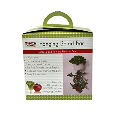 Upsy Downsy Hanging Salad Bar: Garden & Outdoor