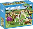 Playmobil 5227 - Recinto con Cavalli e Pony, 4 Pezzi
