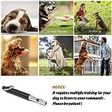 SmartPet Dog Whistle | Professional Dog Whistle