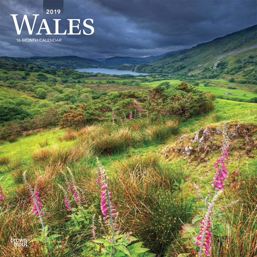 Wales 2019 12 x 12 Inch Monthly Square Wall Calendar, UK United Kingdom Scenic (Multilingual Edition) (Multilingual) Calendar – Wall Calendar, June 1, 2018 Inc. BrownTrout Publishers 1975402944 General Reference
