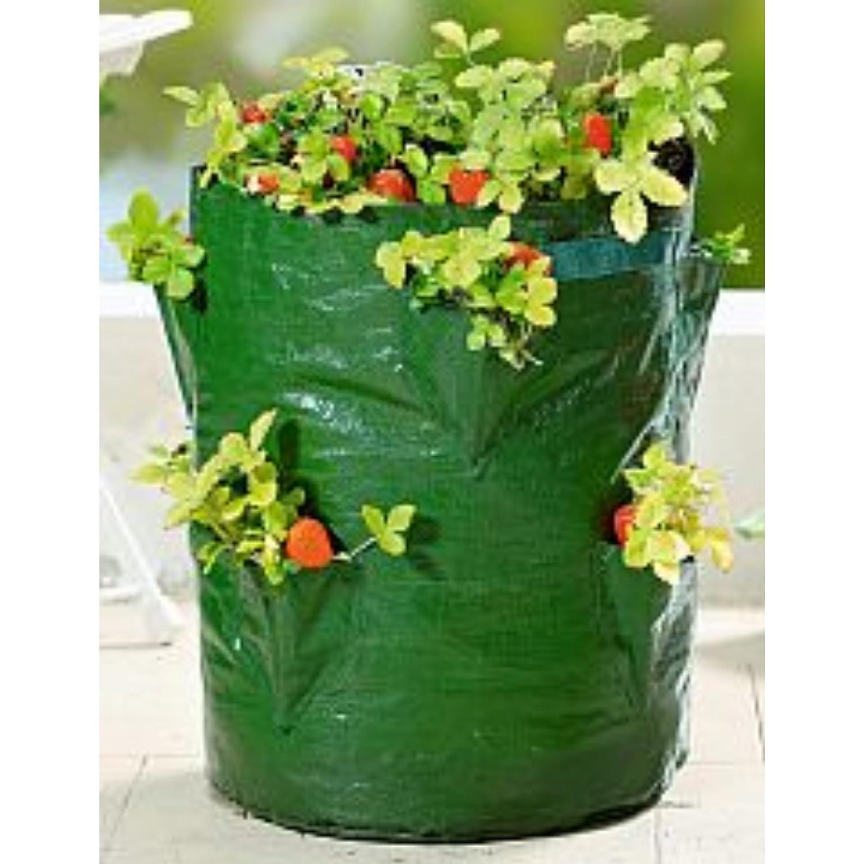 Pflanz Sack Für Erdbeeren 45cm Blumen Balkon Topf Pflanzen Kräuter Ampel  Tasche: Amazon.de: Garten