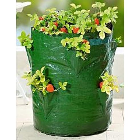 pflanz sack fr erdbeeren 45cm blumen balkon topf pflanzen kruter ampel tasche - Blumen Im Topf Pflanzen