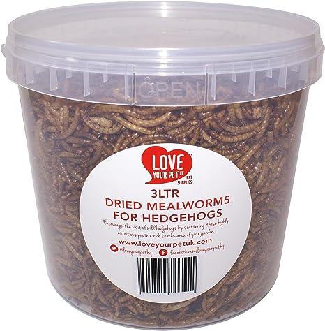 Love your pet UK - Bote de gusanos de harina para erizos ...