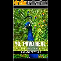 YO, PAVO REAL: Diversidad cultural en los negocios (FORMACION GERENCIAL) (Spanish Edition)