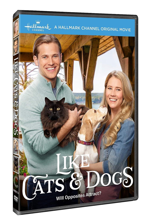 Like Cats & Dogs Edizione: Stati Uniti Italia DVD: Amazon.es ...