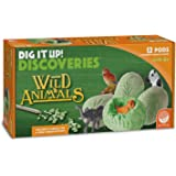 Dig It Up! Discoveries (Wild Animals)