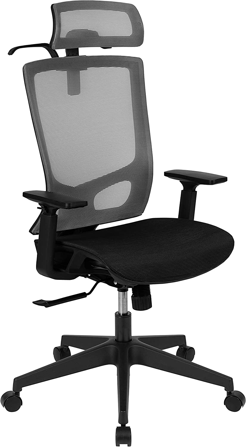 Flash Furniture Ergonomic Mesh Office Chair with Synchro-Tilt, Pivot Adjustable Headrest, Lumbar Support, Coat Hanger and Adjustable Arms in Gray/Black