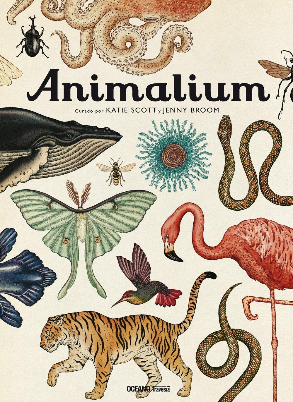 Animalium Tapa blanda – 5 sep 2018 Katie Scott Océano Travesía 6077357227 GLM