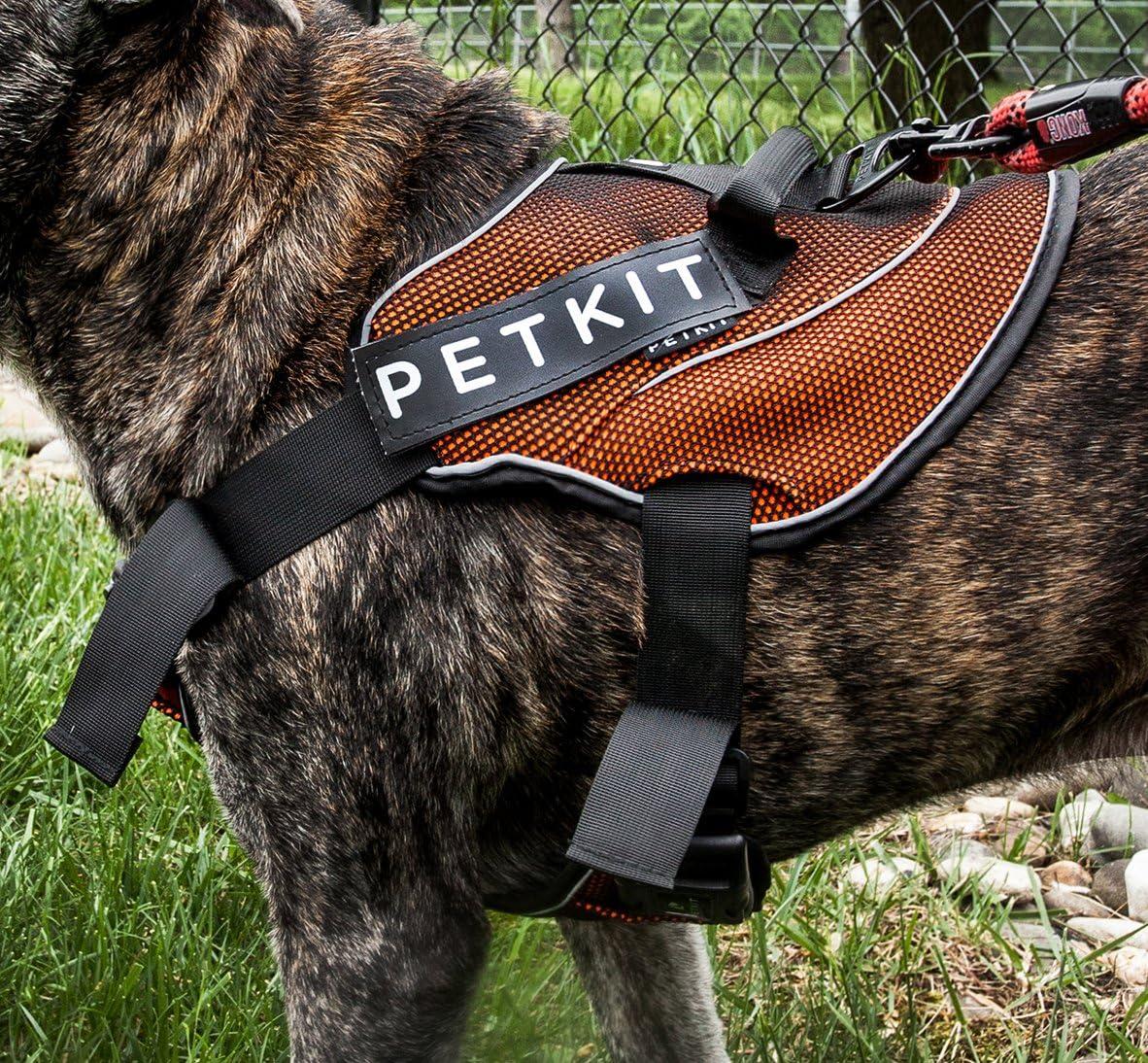 PETKIT Arnés Acolchado Ajustable para Perros de compresión, tamaño ...