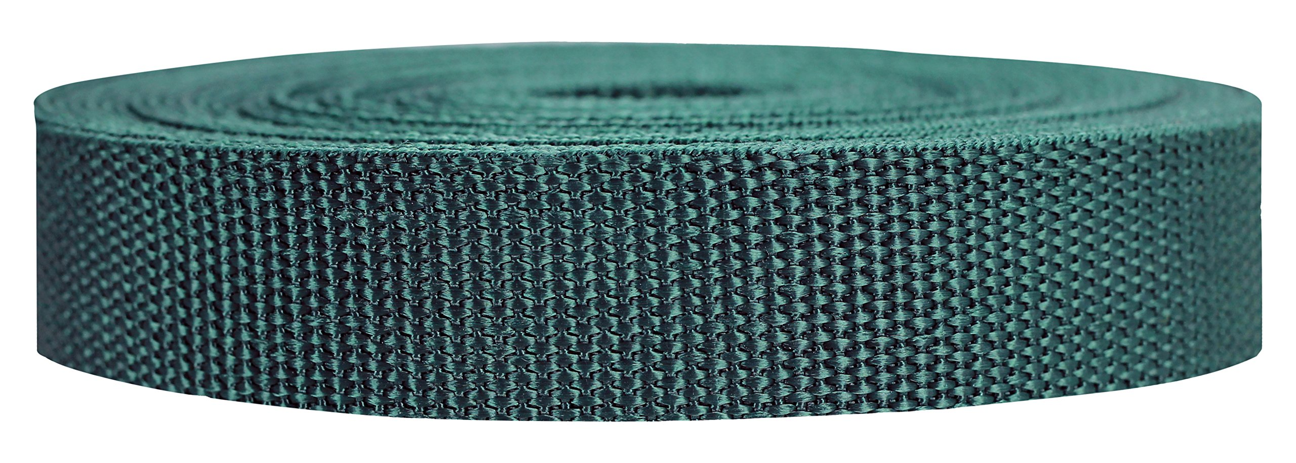 Strapworks Heavyweight Polypropylene Webbing - Heavy Duty Poly Strapping for Outdoor DIY Gear Repair, 1 Inch x 10 Yards - Forest Green