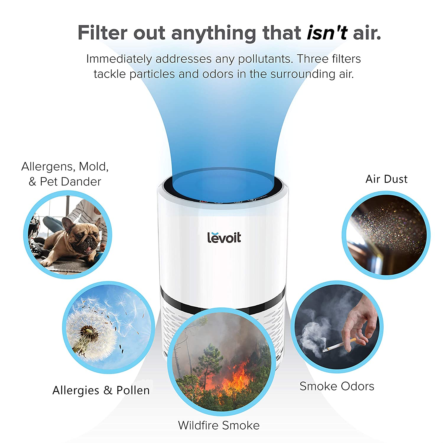 true hepa filter air purifier best
