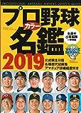プロ野球カラー名鑑2019  【ポケット版/文庫サイズ】 (B.B.MOOK1431)