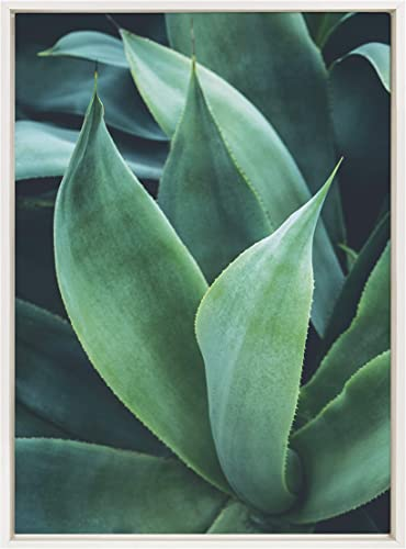 Kate and Laurel Sylvie Agave II Framed Canvas Wall Art