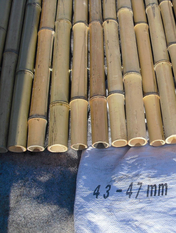 43 47 mm 183 x 183 cm Bambuszaun Rollzaun Sichtschutz Amazon