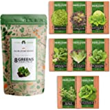 Lettuce & Salad Greens Seed Vault - Non-GMO Vegetable Seeds for Outdoors or Indoors - Romaine Butter Iceberg Lettuce Seeds fo