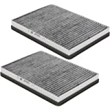 Wix Filters WP6955 Interior Air Filter