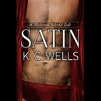 Satin (A Material World Book 2) (English Edition)
