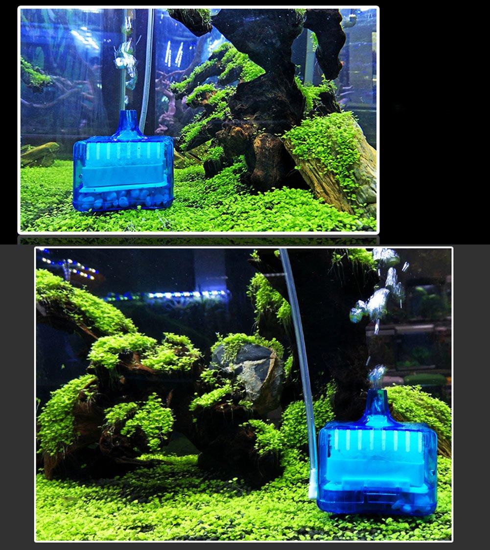 LONDAFISH Filtro neumático bioquímico Activado del Acuario del Filtro de Carbono del Mini Acuario (Negro): Amazon.es: Productos para mascotas