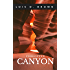 Forgotten Canyon (A Treasure Hunters Short Story Book 1)