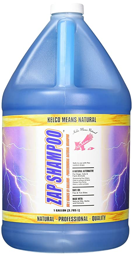Laube Kelco Zap Shampoo 50:1, Gallon