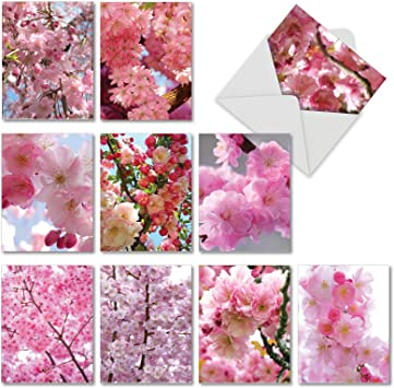 Blank Greetings Cards Flower Pink Spring Birthday All Occasions Notecard
