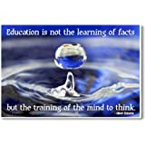 Education Is Not the Learning of Facts but the Training of the Mind to Think - Albert Einstein Quote - NEW Classroom Motivational Poster