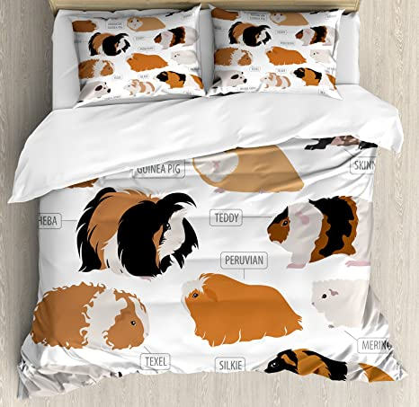 Soft Decorative Fabric Bedding All-Round Elastic Pocket Full Size Infographic Design Classification for Types of Rodent Breeds Lunarable Guinea Pig Fitted Sheet Brown Ginger