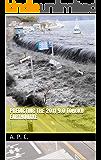 Predicting the 2011 9.0 Tohoku Earthquake