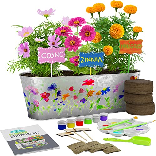 Paint & Plant Flower Growing Kit