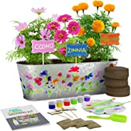 Dan&Darci Paint & Plant Flower Growing Kit - Grow Cosmos, Zinnia, Marigold Flowers : Includes Everything Needed to Paint & G