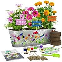 Dan&Darci Paint & Plant Flower Growing Kit - Grow Cosmos, Zinnia, Marigold Flowers...