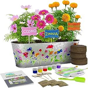Kit de Cultivo de Flores Pinta y Planta - Cultiva Cosmos, Zinnia ...