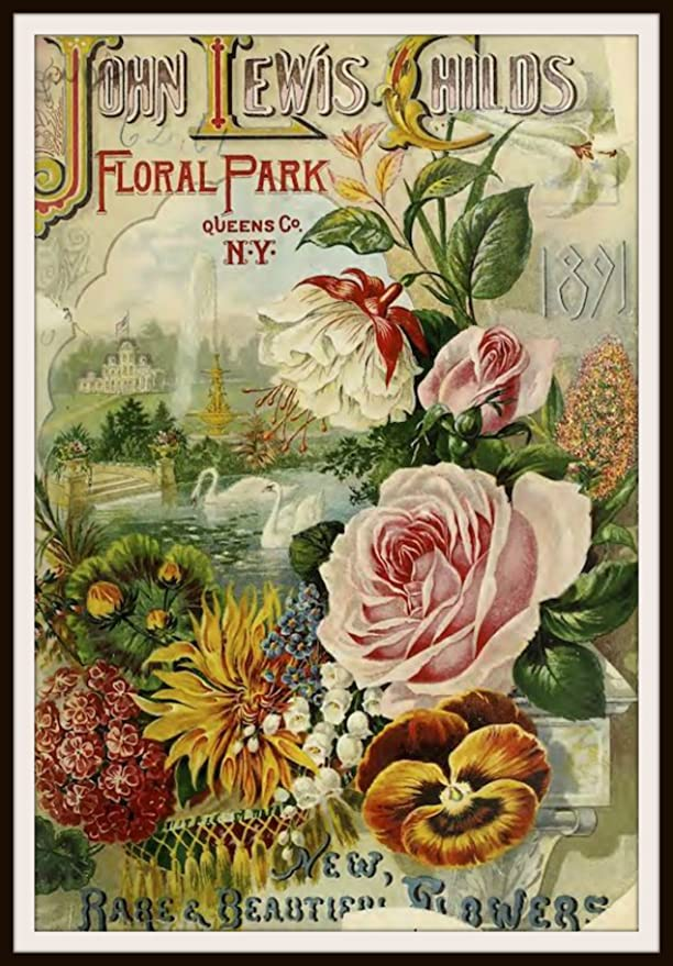 Origianl Circa Late 19th Century Vintage Flower Seed Catalog Cover Original Botanical Framed Vintage Wall Decor