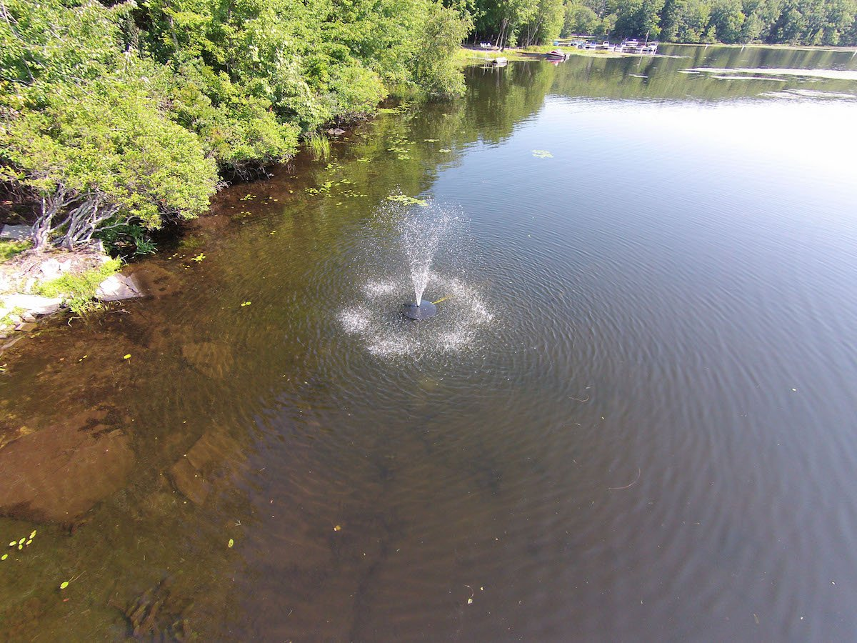 Fawn Lake Fountains 1/2 HP Floating Pond and Lake Fountain