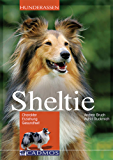 Sheltie: Charakter, Erziehung, Gesundheit (Hunderassen)