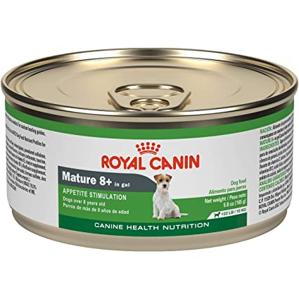 Royal Canin Canine Health Nutrition Mature 8+ in Gel Wet Dog Food - Best Wet Food Diet for Dogs with Kidney Disease