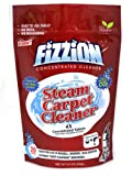 Fizzion Clean Steam Cleaner (20 Tablets) - Steam Cleaner Tablets Carpet Stain Remover, Odor Neutralizer & Upholstery Cleaner Makes 10 Gallons