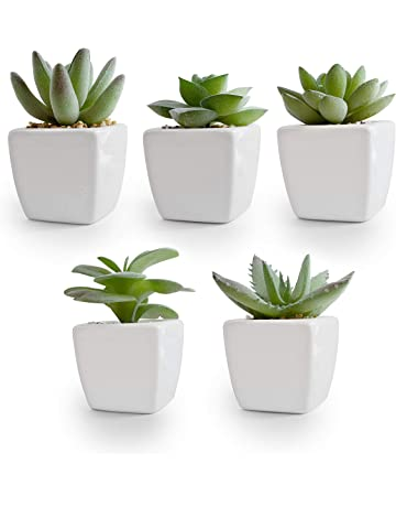 Amazon Ca Artificial Plants Home Kitchen