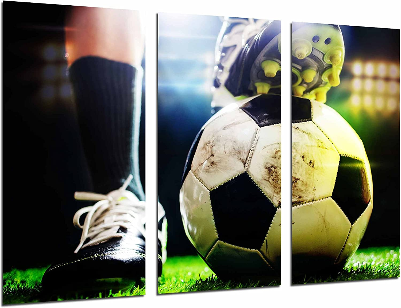 Cuadros Cámara Cuadro Fotográfico Motivacion Deporte Futbol, Balon ...