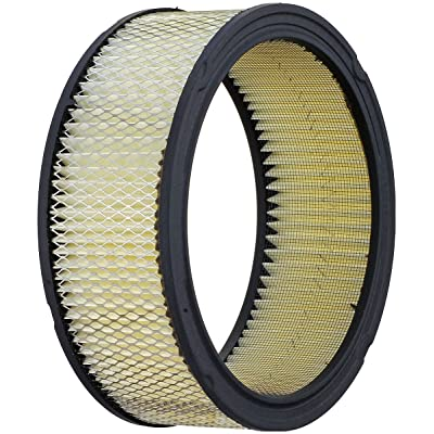 Luber-finer AF178 Heavy Duty Air Filter: Automotive