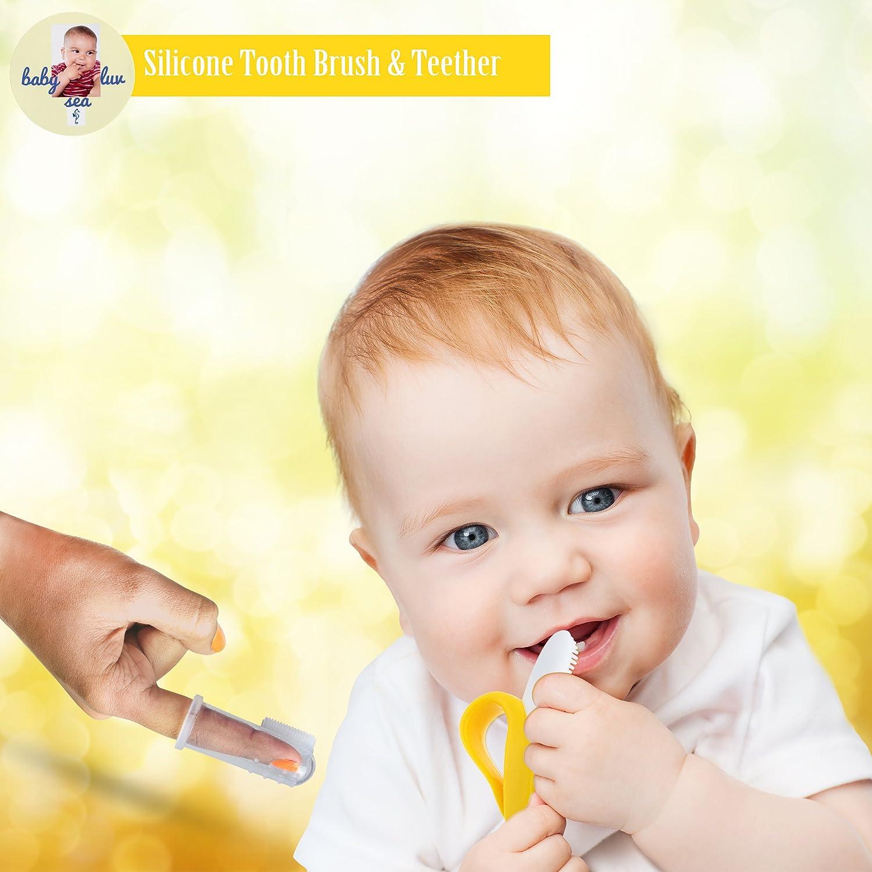 Amazon.com: Bebé Luv mar bebé cepillo para polvo de dientes ...